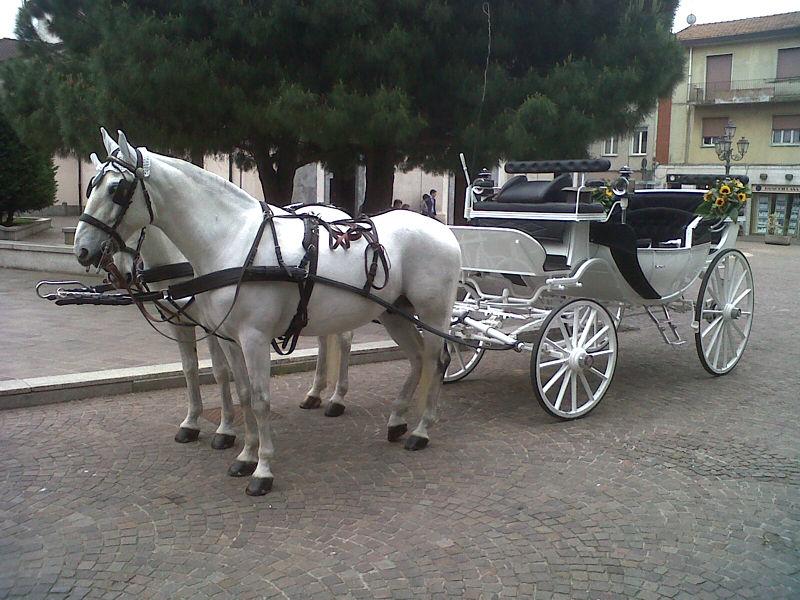 Matrimonio In Carrozza : Noleggio carrozza matrimoni milano affitto con